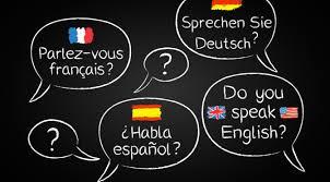Nouveau – Formations en langue